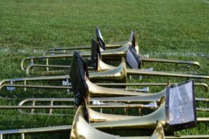 Trumpets on grass
